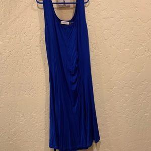 Calvin Klein Slimming Blue Cotten Dress